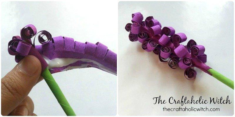 hyacinth (4)