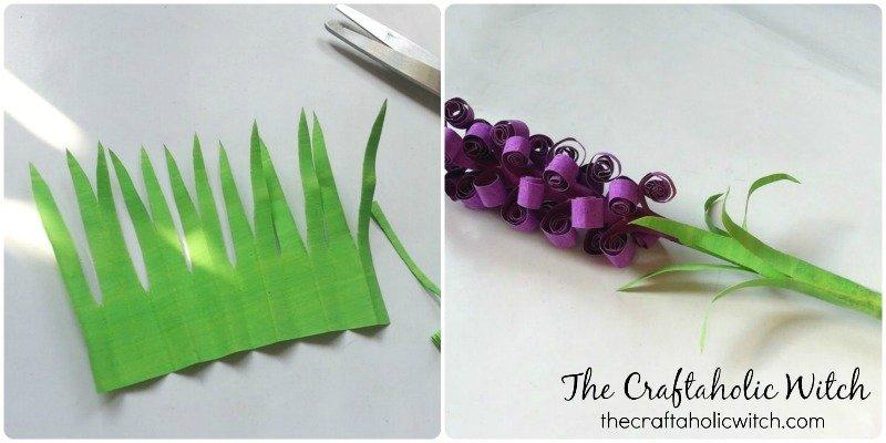 hyacinth (5)